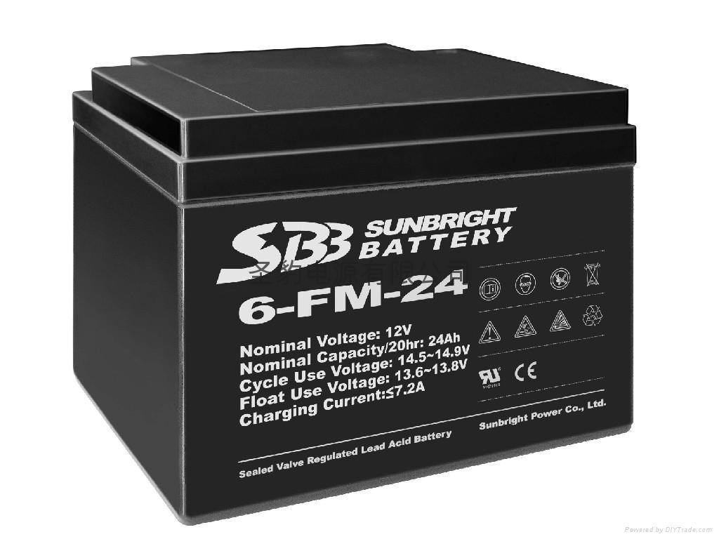 UPS后备电源用铅酸蓄电池 1