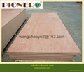 18mm red  plywood furniture plywood