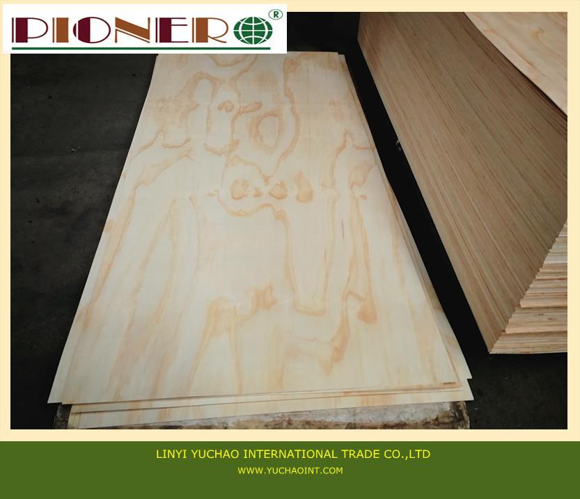 Pine plywood c grade for furniture pionero