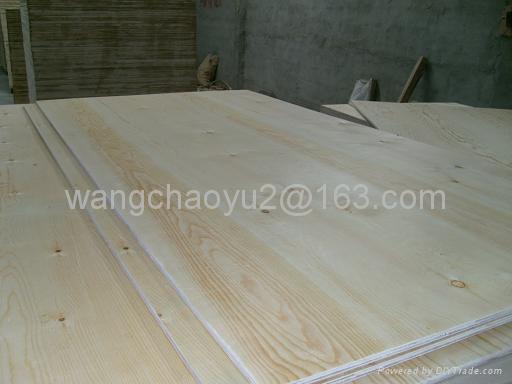 C Grade Plywood ~ Pine plywood c grade for furniture pionero