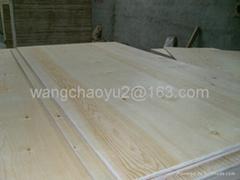 Pine Plywood (C+/C grade