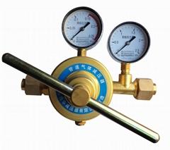 YQWG-224丙烷减压器