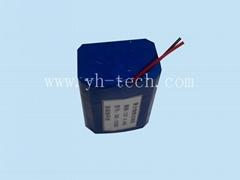供应12V 4400MAH 聚合物锂电池组