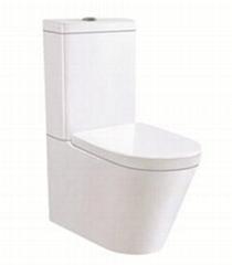 Two piece ceramic toilet