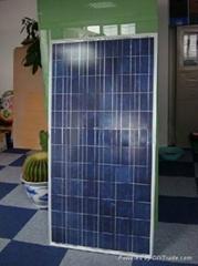 60 w/watt poly solar panel