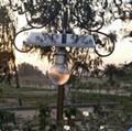 12瓦太陽能月光燈 4