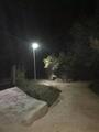 20watt Solar Flybird Light