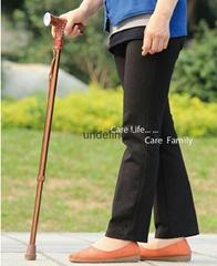 Electronic walking cane stick with FM radio