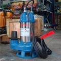 博士多2寸單相鑄鐵立式污水切割泵DSK-05 2