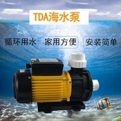 2寸大流量塑料泵TDA系列750W海水泵养殖场循环增压泵