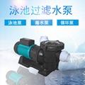 海水泵STP250大流量清水泵
