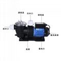 游泳池海水增壓水泵STP120海產業魚池吸污帶過濾網海水泵 4