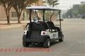 電動高爾夫 1