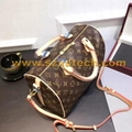 LV Handbags LV bags Louis Vuitton bags Louis Vuitton handbags