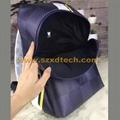LV Backpacks Louis Vuitton APOLLO BACKPACK N44006 Damier Cobalt 15