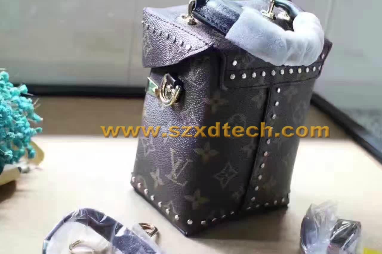 LV CAMERA BOX Monogram M42999 LV Handbags LV Bags 12