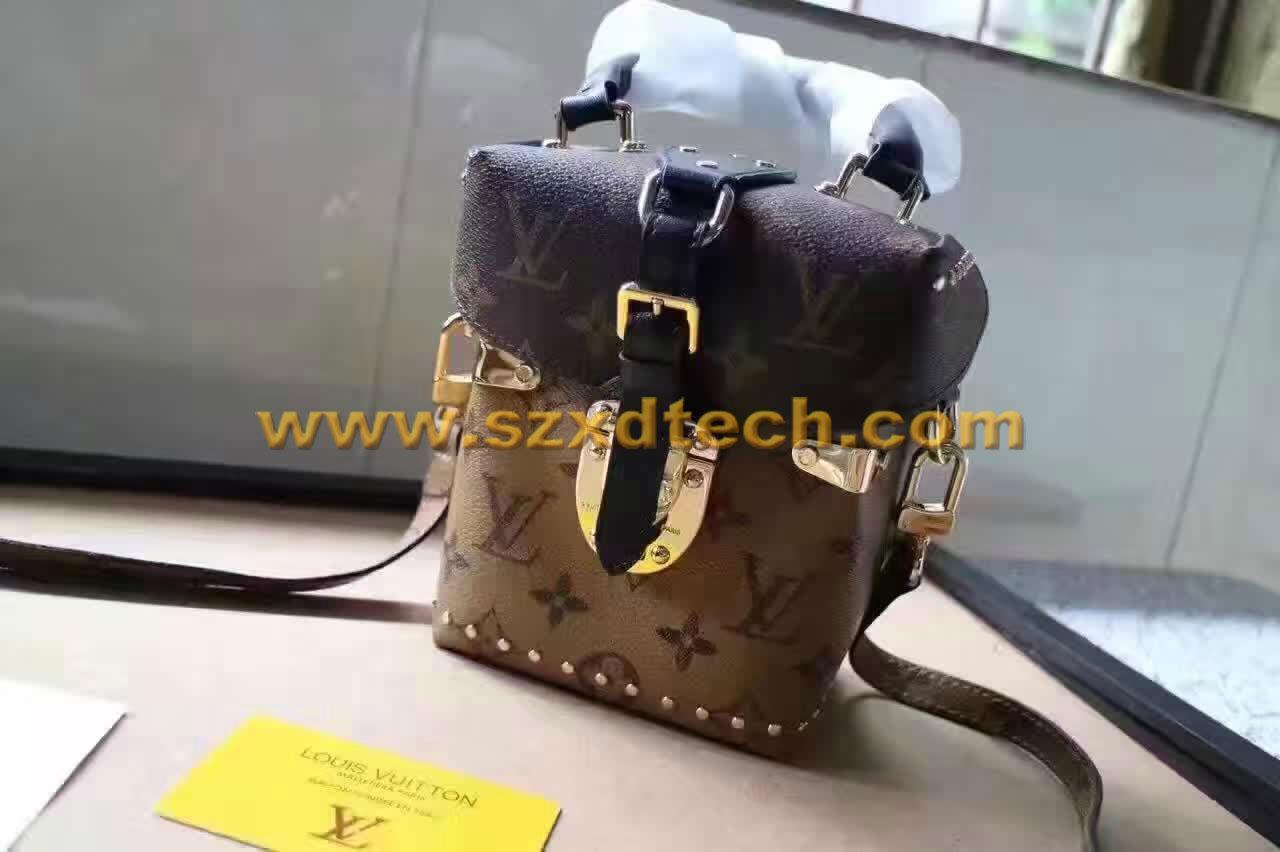 LV CAMERA BOX Monogram M42999 LV Handbags LV Bags 2