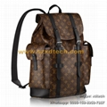 Luxury and Fashion LV Backpacks CHRISTOPHER PM N41379 Best Seller Travel Bags 2