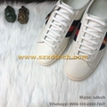 Wholesale Gucci White Shoes Gucci White Sneaker Gucci Shoes Lovers Shoes