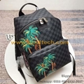 Louis Vuitton APOLLO N50003 LV Messenger Bag LV Men's Bag LV Cross Bag