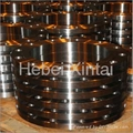 Carbon Steel Flange 2