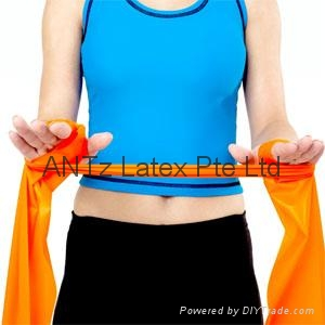 Resistance Exercise Bands & Tubes 1