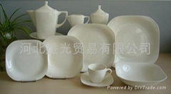 square porcelain dinner set
