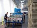 egg tray machine models