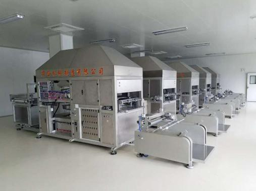Plastic Thermoforming Machine for Blister Clamshell Trays