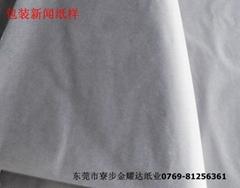 廣東東莞新聞紙