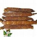 PanaxGinseng Root Extract