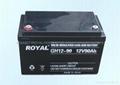 ROYAL品牌UPS电源蓄电池