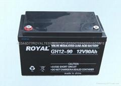 ROYAL品牌蓄电池UPS电源机房空调