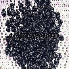 单冻 黑莓