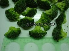 冷冻 绿花菜
