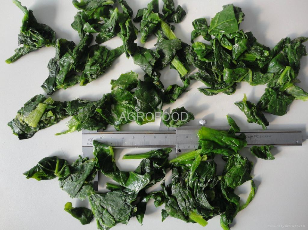 速凍菠菜 1