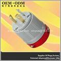 NEMA L5-30 Locking Plug