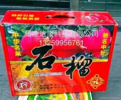 楊凌達康石榴禮盒