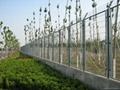 Customs Fence HW-01 3