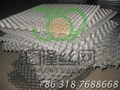309S 龜甲網 G-05