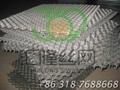 309S 龟甲网 G-05