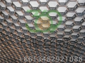 Q345钢龟甲网 G-01 1