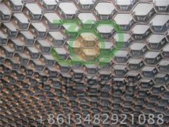 Q345钢龟甲网 G-01