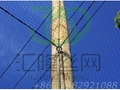 SW17 aviary mesh,stainless steel cable mesh, bird netting,balustrade fencing 3