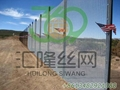 Securextra 2D Security Fencing 3