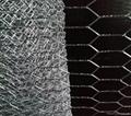 hexagonal wire mesh From tianjin port