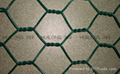 Best price hexagonal wire mesh 2