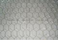 No.1 choice hexagonal wire mesh