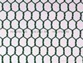 Manufacture hexagonal wire mesh 2