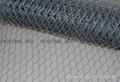 Famous brand hexagonal wire mesh